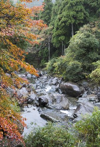 大江町の二瀬川渓流